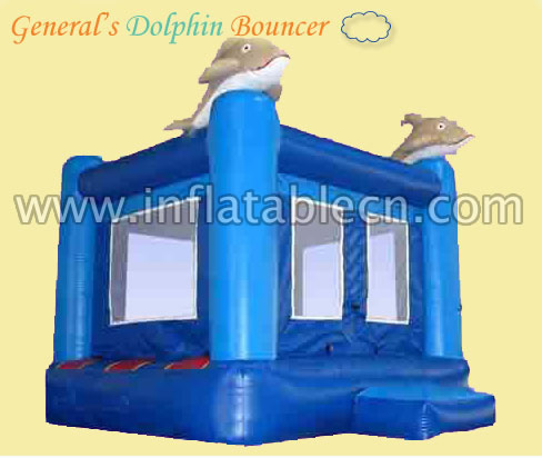Dolphin Bouncer