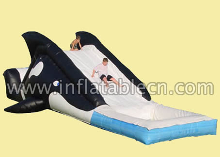 Inflatable whale slide