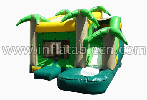 Jungle Water Slide House Combo