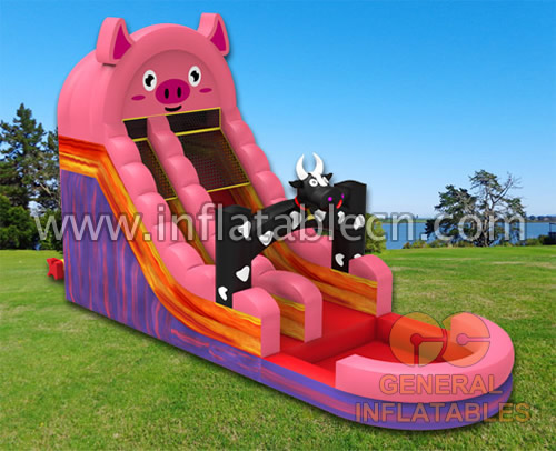 Farm water slide