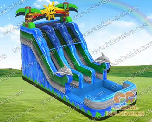 Sunshine Dolphin dual water slide